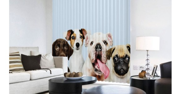 Your Family Members - Pets