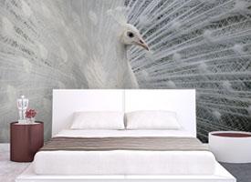 White peacock I