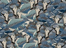 Blue Of Birds