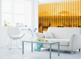 Home vertical blinds