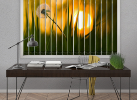 Photo vertical blinds
